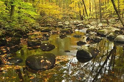 Autumn Stream Reflections Art Print by Stephen  Vecchiotti