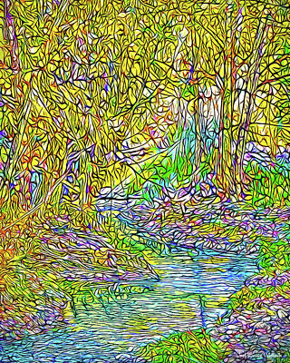 Digital Art - Autumn Stream - River In Boulder County Colorado by Joel Bruce Wallach
