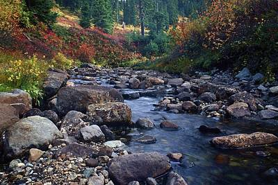 Photograph - Autumn Stream by Todd Kreuter