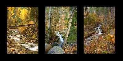 Photograph - Autumn Streams Trio by Idaho Scenic Images Linda Lantzy