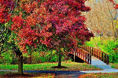 Photograph - Autumn Stroll by Michelle McPhillips