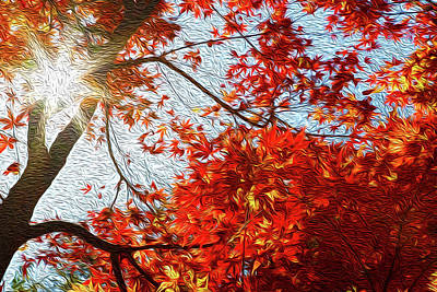 Beauty In Nature Digital Art - Autumn Sun by Les Cunliffe