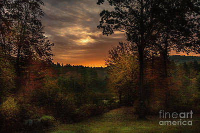Photograph - Autumn Sun by Mim White