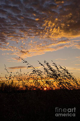 Photograph - Autumn Sunrise 2 by Bob Christopher