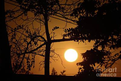 Photograph - Autumn Sunrise by Angela J Wright