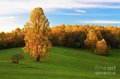 Photograph - Autumn Sunrise On A Blue Ridge Meadow by Dan Carmichael
