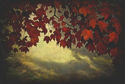 Photograph - Autumn Sunset by Bonnie Willis