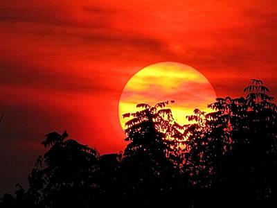 Photograph - Autumn Sunset by Jennifer Wheatley Wolf