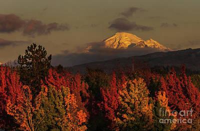 Photograph - Autumn Sunset by Paul Conrad