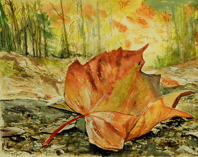 Painting - Autumn Sunshine by Betty-Anne McDonald