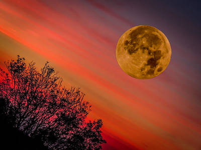 Photograph - Autumn Super Moon And Irish Sunrise by James Truett
