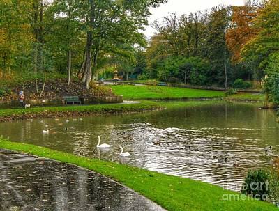 Photograph - Autumn Swan Lake by Joan-Violet Stretch