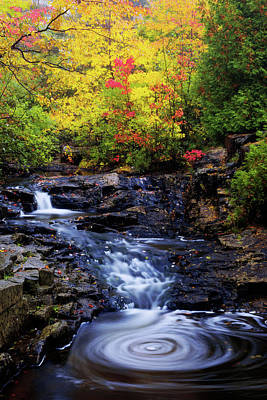 Northeast Photograph - Autumn Swirls by Chad Dutson