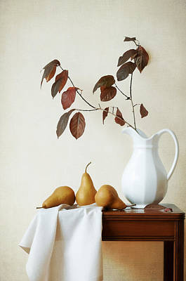 Photograph - Autumn Tableau by Colleen Farrell