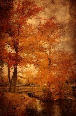 Manipulation Photograph - Autumn Tapestry - Lake Carasaljo by Angie Tirado