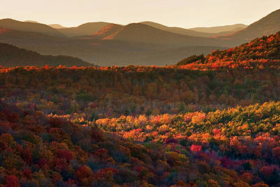 Photograph - Autumn Tapestry by Neil Shapiro