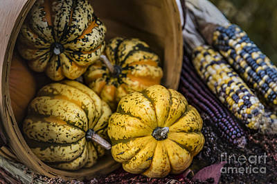 Photograph - Autumn Thanksgiving  Harvest Basket Overflowing  by Alissa Beth Photography
