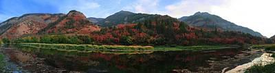 Photograph - Autumn Thirds by David Andersen