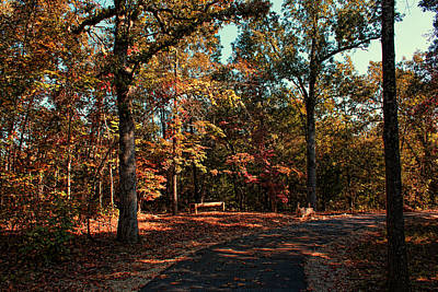 Photograph - Autumn Trail Bench by Rick Friedle
