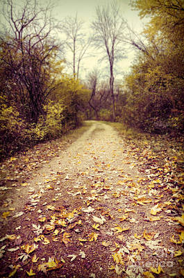 Photograph - Autumn Trail by Jill Battaglia