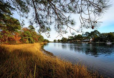 Photograph - Autumn Trail by Michael Scott