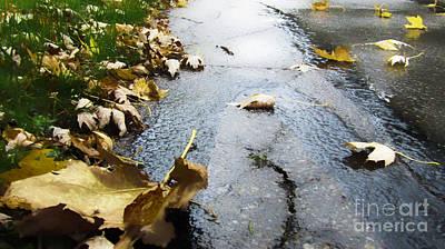 Photograph -  Autumn Trail by Robert Knight