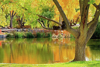 Photograph - Autumn Tranquility by Donna Kennedy