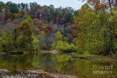 Photograph - Autumn Tranquility by Jennifer White