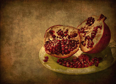 Photograph - Autumn Treat by Evelina Kremsdorf