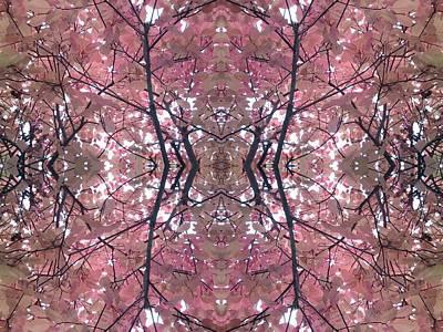 Photograph - Autumn Tree Photo 801 Fractal A by Julia Woodman