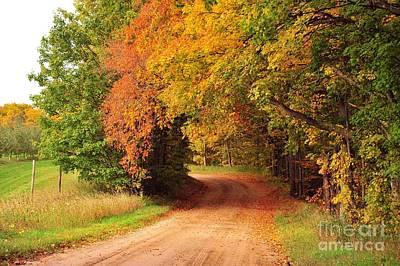 Harvest Photograph - Autumn Tree Tunnel Heaven by Terri Gostola
