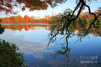 Photograph - Autumn Trees And Reflections by Charline Xia