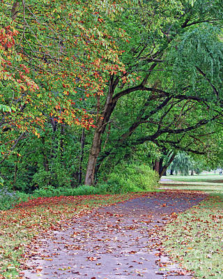 Photograph - Autumn Trees At Bisset Park by Kerri Farley
