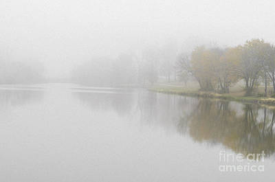 Photograph - Autumn Trees Fading Into Fog by Tamara Becker