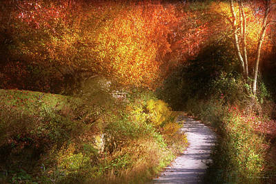 Photograph - Autumn - Trees - Heaven's Trail by Mike Savad