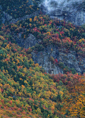 Photograph - Autumn Trees On Crawford Notch by Dan Sproul
