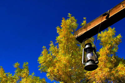 Photograph - Autumn Trees With Lantern 1 by Bonnie Follett