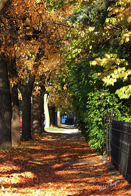 Photograph - Autumn Tunnel Of Love by Wild Thing