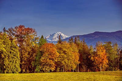Photograph - Autumn View Of Mt. Baker by Judy Wright Lott
