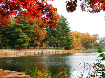 Herrick Lake Photograph - Autumn View by Teresa Schomig