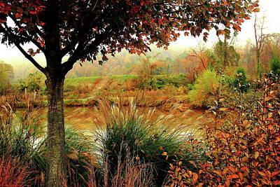 Photograph - Autumn Views by Allen Nice-Webb