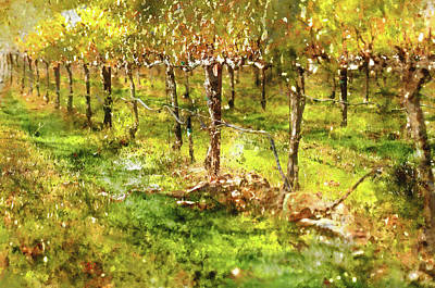 Autumn Vineyard Art Print by Brandon Bourdages