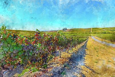 Photograph - Autumn Vineyard In Napa Valley California by Brandon Bourdages