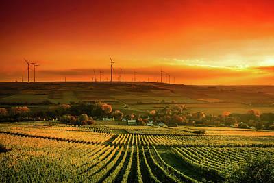 Photograph - Autumn Vineyards Sunset by Unsplash - Karsten Wurth
