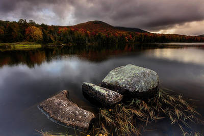 Photograph - Autumn Visit by Mike Lang
