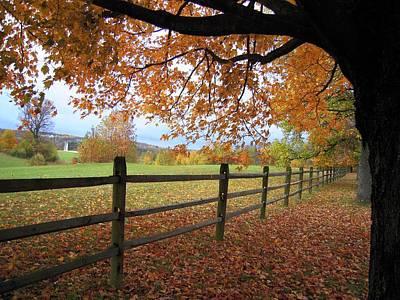 Autumn Vista Art Print by Don Struke