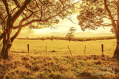 Autumn Vista Art Print by Jorgo Photography - Wall Art Gallery