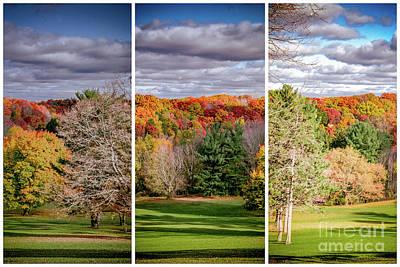 Photograph - Autumn Vista by William Norton