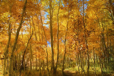 Autumn Walk Among The Aspens Art Print by Donna Kennedy