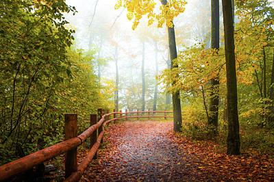 Autumn Walk Art Print by Art Spectrum